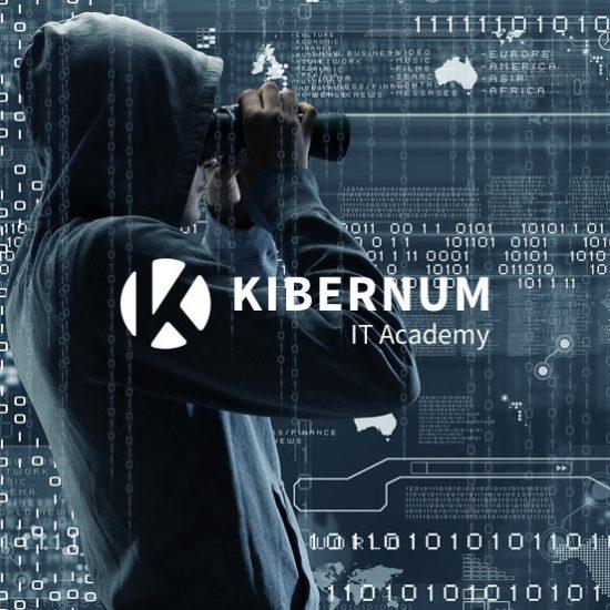 Aplicación de procedimientos de Hacking Ético